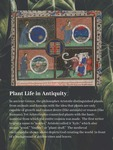 01. Plant Life in Antiquity