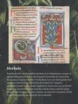 02. Herbals