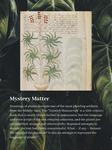 09. Mystery Matter