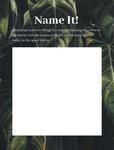 10. Name It!