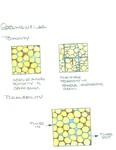 porosity_sources by John J. Renton and Thomas Repine
