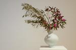 Vase by Tyler Stonestreet