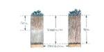 penetration_plantroots by John J. Renton and Thomas Repine